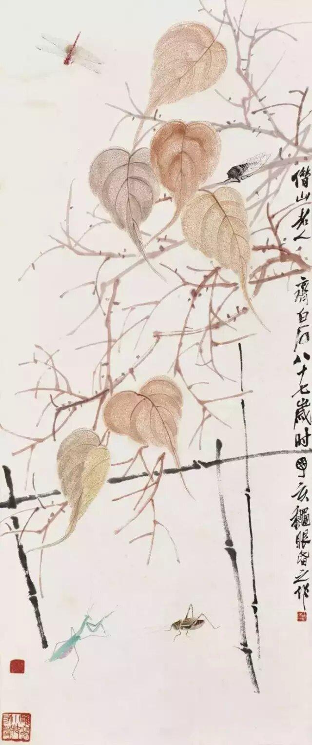 贝叶草虫1